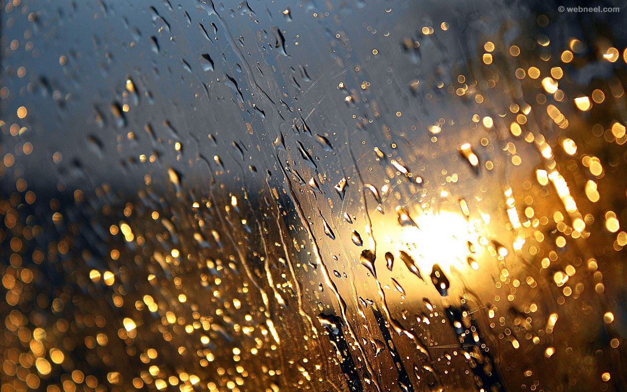 rain wallpaper raindrops