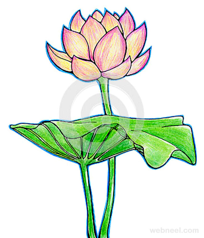 Flower drawing 10 thecheapjerseys Choice Image