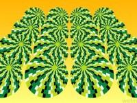 10-optical-illusion