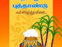 11-pongal-greetings