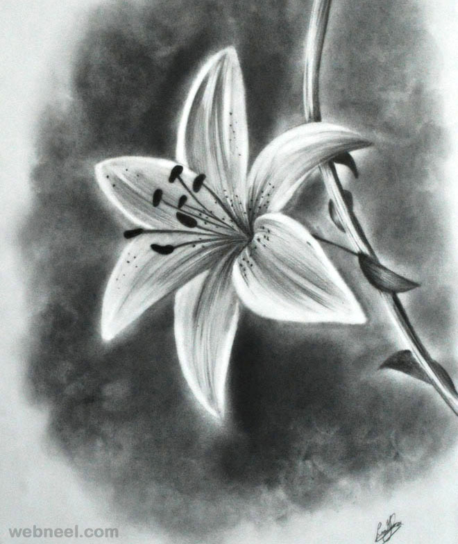 Easy Drawings Of Flowers In Pencil flower drawing