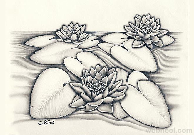 Easy Drawings Of Flowers In Pencil flower drawings lotus pencil