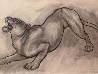 15-animal-drawing