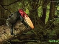10-deforestation-ads-creative-advertising