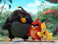 11-the-angry-birds-wallpaper-animation-movie-list-2016