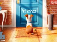 9-secret-life-of-pets-poster-animation-movie-list-2016