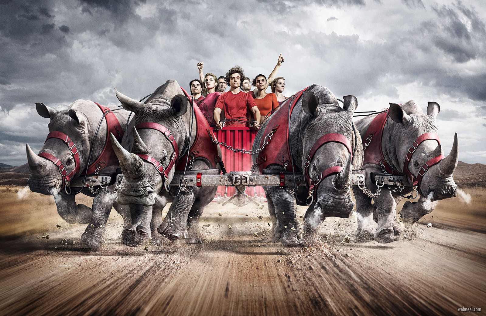 photo manipulation animal gladiators