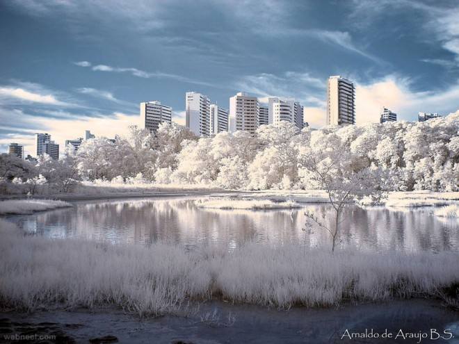 infrared infra red photography photograph photo picture