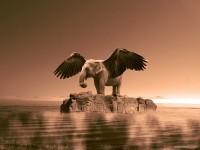 18-best-photo-manipulation-by-jelani-dozier
