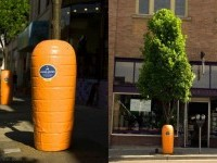 20-carrot-wrap-tree-ad