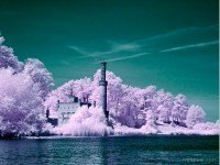 23-infrared-photography