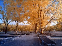 28-infrared-photography