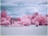 3-infrared-photography