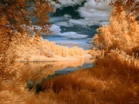 30-infrared-photography