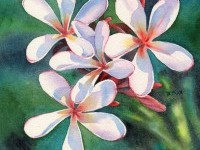 13-watercolor-painting-flower-by-frangipani