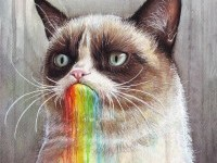 16-cat-color-pencil-drawing