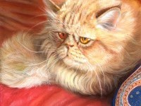 21-persian-cat-painting