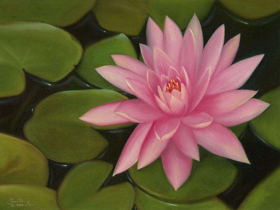 Lotus Flower Art Lotus Flower Pa...