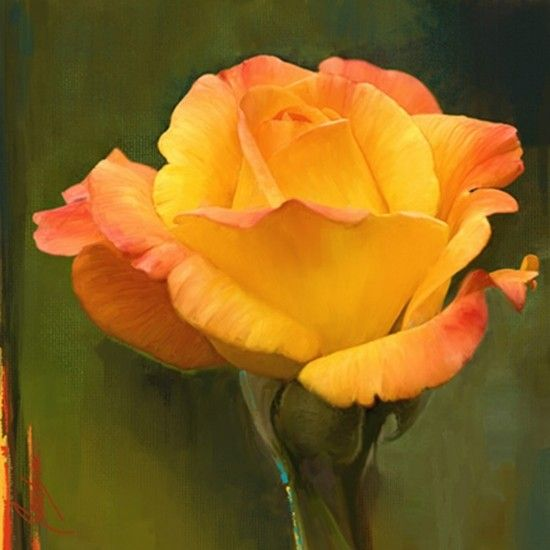 Yellow rose flower painting mightylinksfo
