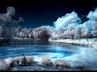 32-infrared-photography
