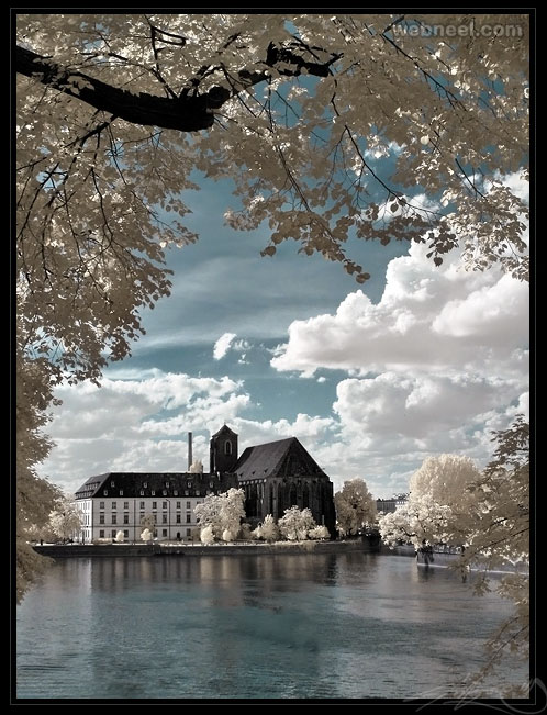 infrared photography by anrold