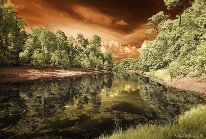 infrared photography by shahidul alam