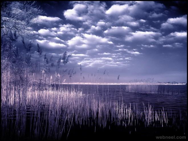 infrared photography bymichilauke