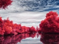 40-infrared-photography-by-myinqi