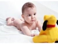 6-newborn-baby-photography