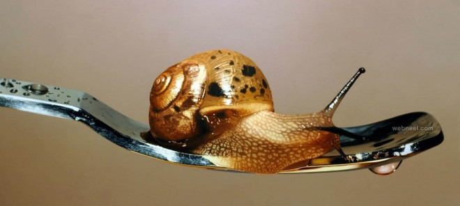 golden hyper snail realistic painting
