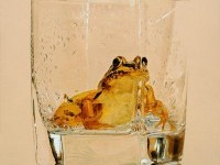 15-frog-in-glass-hyper-realistic-painting-by-youngsungkim