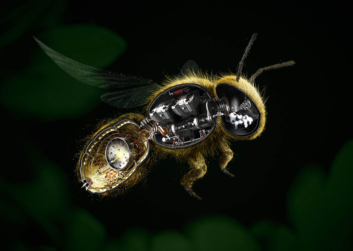 photo manipulation bee