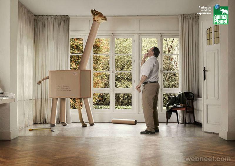 animal print ads