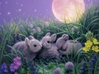 2-moon-rabbit-fantasy-artwork