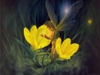 3-night-flowers-fantasy-artwork