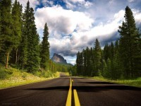 8-forest-road-landscape-photography
