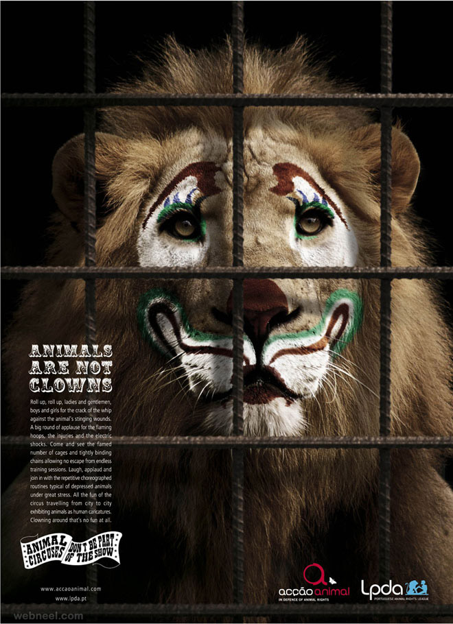 save animals zoo animal ad