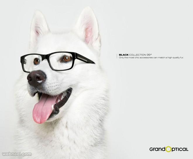 print ads optical