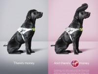 19-animal-advertisment-print-ads