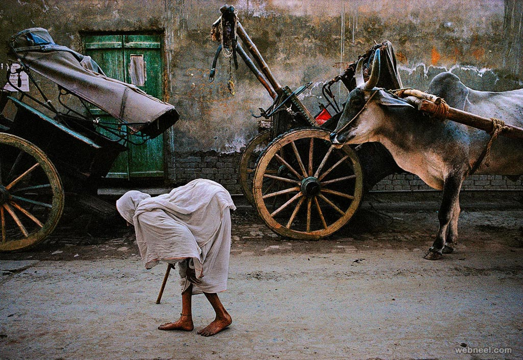 incredible india photography
