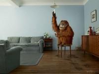 27-creative-advertising-ideas-by-jean-yves-lemoigne
