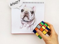11-interactive-illustration-dog-drawing-idea-by-valerie-susik