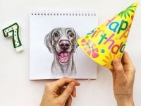 14-interactive-illustration-dog-drawing-idea-by-valerie-susik