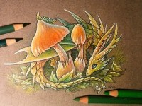 15-forest-guardian-color-pencil-drawing-by-alvia-alcedo