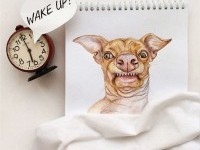 16-interactive-illustration-dog-drawing-idea-by-valerie-susik