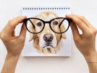 17-interactive-illustration-dog-drawing-idea-by-valerie-susik