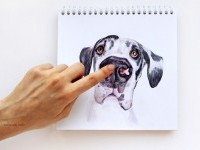 19-interactive-illustration-dog-drawing-idea-by-valerie-susik