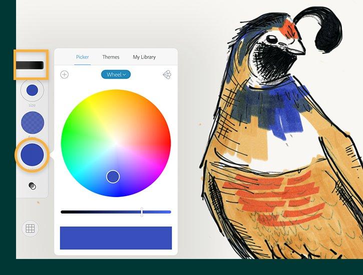 photoshop sketch mobile app