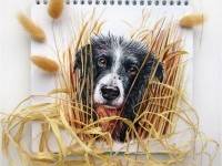 21-interactive-illustration-dog-drawing-idea-by-valerie-susik