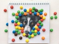 4-interactive-illustration-dog-drawing-idea-by-valerie-susik